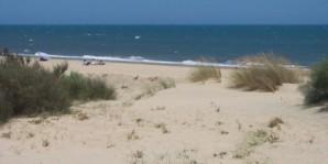 Ecomar retira casi 400 kg de residuos de Nueva Umbría