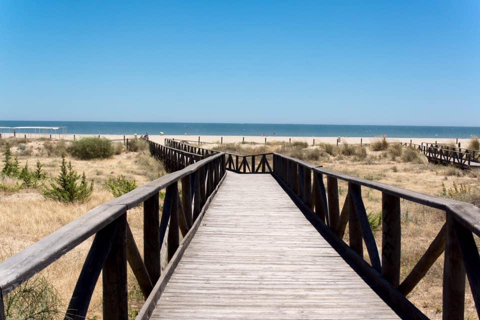 foro de erección de playa de