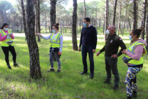 El Ayuntamiento de Cartaya pone en marcha labores de control y señalización del pinar