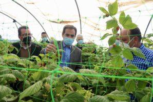 El portavoz del PP en el Parlamento Andaluz defiende al sector agrícola desde Cartaya