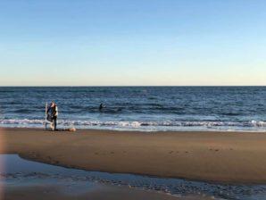 Este martes se inicia el plazo para la obtención del carné de mariscador