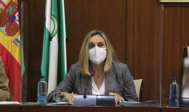 La Junta vuelve a afirmar que se hará cargo de los accesos al Hospital de la Costa